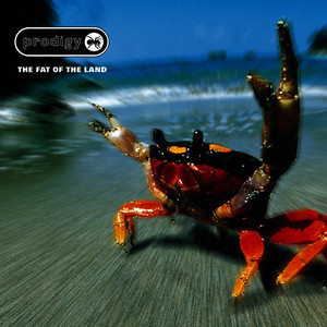 Albumcover The Prodigy - The Fat Of The Land