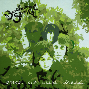 Albumcover Beachwood Sparks - Once We Were Trees