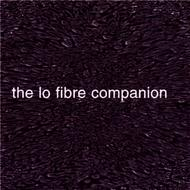 Albumcover Various Artists - Invisible Records - The Lo Fibre Companion