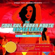 Various Artists - The Soulful Funky House Experience