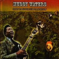 Albumcover Muddy Waters - Down On Stovall's Plantation
