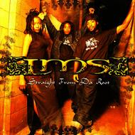 LMS - Straight From Da Root