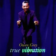 Owen Grey - True Vibration