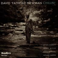 David 'Fathead' Newman - Chillin'
