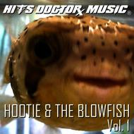Albumcover Done Again - Hits Doctor Music As Originally Performed By Hootie & The Blowfish - Vol. 1