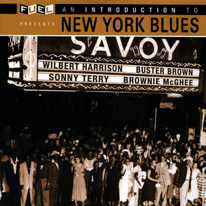 Albumcover Various Artists - An Introduction To New York Blues