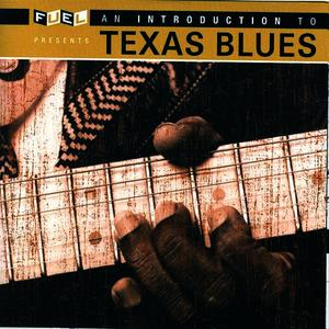Albumcover Various Artists - An Introduction To Texas Blues