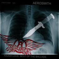 Albumcover Aerosmith - Tough Love: Best Of The Ballads