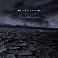 Avishai Cohen - Flood