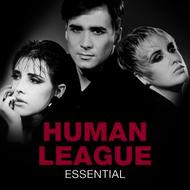 Albumcover The Human League - Essential