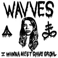 Albumcover Wavves - I Wanna Meet Dave Grohl (Single)