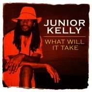 Albumcover Junior Kelly - What Will It Take