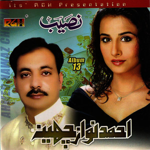 Albumcover Ahmed Nawaz Cheena - Naseeb Vol 13