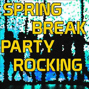 Albumcover The Hit Nation - Spring Break Party Rocking