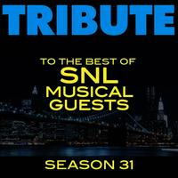 Tribute to the Best of SNL Musical Guests Season 31