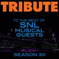 Déjà Vu - Tribute to the Best of SNL Musical Guests Season 30