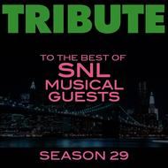 Déjà Vu - Tribute to the Best of SNL Musical Guests Season 29