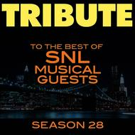 Albumcover Déjà Vu - Tribute to the Best of SNL Musical Guests Season 28