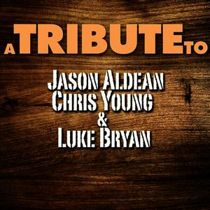 Albumcover Déjà Vu - A Tribute to Jason Aldean, Chris Young & Luke Bryan
