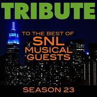 Albumcover Déjà Vu - Tribute to the Best of SNL Musical Guests Season 23