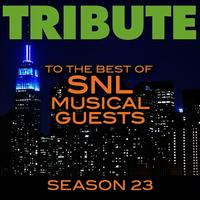 Tribute to the Best of SNL Musical Guests Season 23