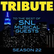 Albumcover Déjà Vu - Tribute to the Best of SNL Musical Guests Season 22