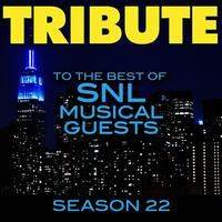 Tribute to the Best of SNL Musical Guests Season 22