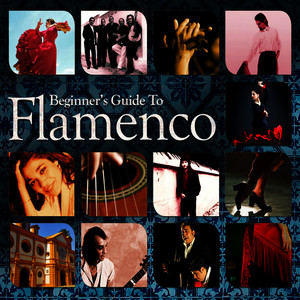 Albumcover Various Artists - Beginners Guide to Flamenco
