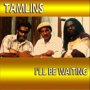 Albumcover Tamlins - I'll Be Waiting