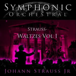 Albumcover Joseph Francek Conducting The Vienna Johann Strauss Orchestra - Symphonic Orchestral - Waltzes Vol 1