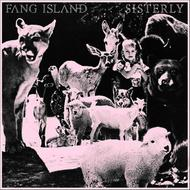 Albumcover Fang Island - Sisterly - Single
