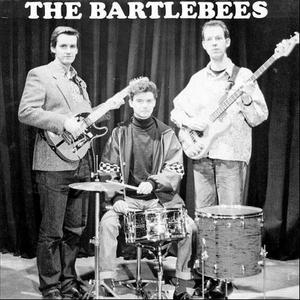 Albumcover The Bartlebees - Diary Of A Youngblood