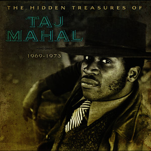 Albumcover Taj Mahal - The Hidden Treasures Of Taj Mahal