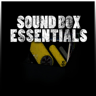 Albumcover King Tubby - Sound Box Essentials Platinum Edition