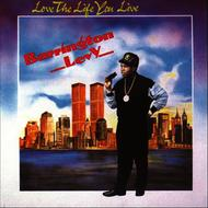 Albumcover Barrington Levy - Love The Life You Live