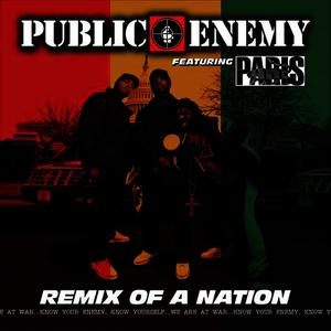Albumcover Public Enemy - Remix Of A Nation