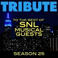 Albumcover Déjà Vu - Tribute to the Best of SNL Musical Guests Season 25