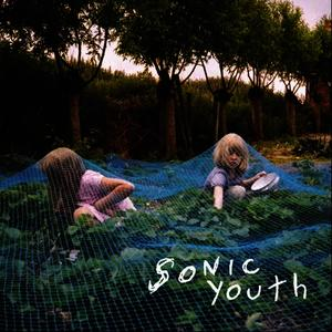 Albumcover Sonic Youth - Murray St.