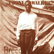 Albumcover T-Bone Walker - The Inventor of the Electric Guitar Blues
