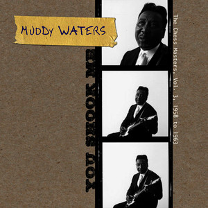 Albumcover Muddy Waters - You Shook Me - The Chess Masters, Vol. 3, 1958 to 1963