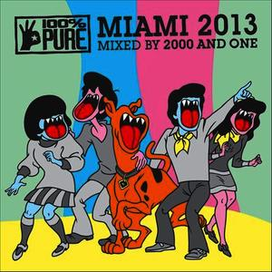 Albumcover 2000 And One - 100% Pure Miami 2013