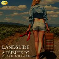 Albumcover Ameritz - Tribute - Landslide (A Tribute to Dixie Chicks)