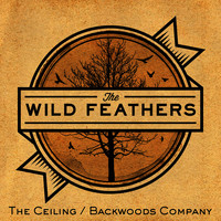 The Ceiling / Backwoods Company