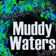 Albumcover Muddy Waters - Walkin' Blues (Live)