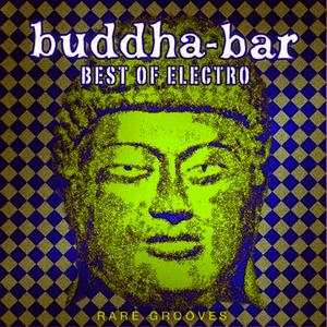 Albumcover DJ Ravin - Buddha-Bar: Best of Electro - Rare Grooves