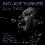 Big Joe Turner - Big Joe Turner Live 1983