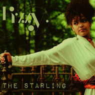 Kizzy - The Starling