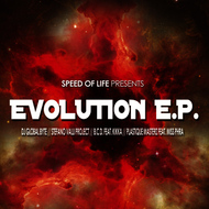 Various Artist - Evolution
