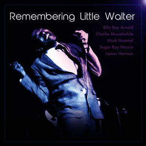 Albumcover Various Artists - Remembering Little Walter