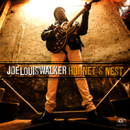 Albumcover Joe Louis Walker - Hornet's Nest